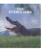 Let's Take a Trip - The Everglades
