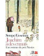 Les aventures du Petit Nicolas : Joachim a des ennuis