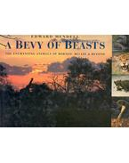 A Bevy Of Beasts - The Enchanting Animals of Borneo, Belize and Beyond