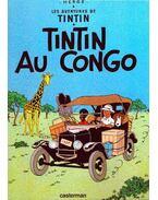 Les aventures de Tintin: Tintin au Congo