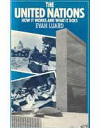 The United Nations - How it Works and What it Does