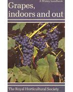 Grapes, Indoors and Out