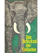 Das Schicksal der Elefanten