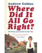 Where Did It All Go Right ? - Growing Up Normal in the 70s
