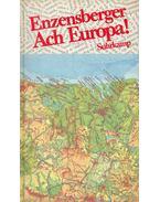 Enzensberger Ach Europa!
