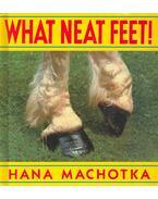 What Neat Feet!