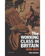 The Working Class in Britain 1850-1939