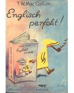 Englisch perfekt!