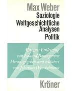 Soziologie – Weltgeschichtliche Analysen – Politik