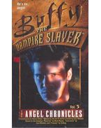 Buffy the Vampire Slayer – The Angel Chronicles #3