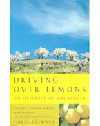 Driving over Lemons – An Optimist in Andalucia