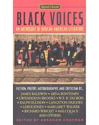 Black Voices – An  Anthology of African-American Literature