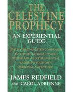 The Celestine Prophecy - An Experiential Guide