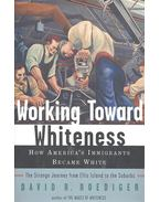 Working Toward Whiteness – How America's Immigrants Became White