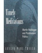 Timely Meditations – Martin Heidegger and Postmodern Politics
