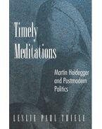 Timely Meditations – Martin Heidegger and Postmodern Politics