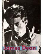 James Dean, sur les traces d'un géant