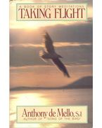 A Book of Story Meditation – Taking Flight