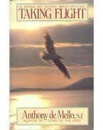 A Book of Story Meditation – Taking Flight