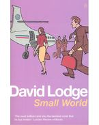 Small World - An Academic Romance