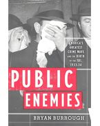 Public Enemies – America's Greatest Crime Wave and the Birth of the FBI 1933-34 - Burrough, Bryan