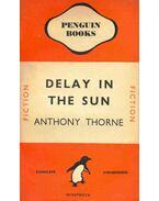Delay in the Sun