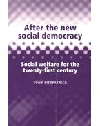 After the New Social Democracy – Social Welfare for the Twenty-First Century