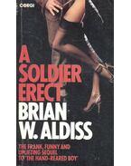 A Soldier Erect