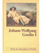 Johann Wolfgang Goethe I.
