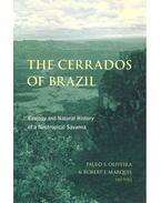 The Cerrados of Brazil