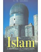 Islam - A Historical Companion