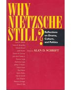 Why Nietzsche Still? - Reflections on Drama, Culture and Politics