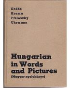 Hungarian in Words and Pictures (Magyar nyelvkönyv)