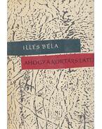 Ahogy a kortárs látta - Illés Béla