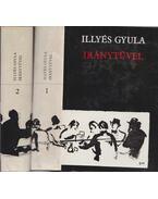 Iránytűvel I-II. kötet - Illyés Gyula