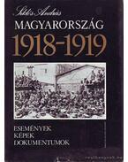 Magyarország 1918-1919