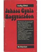 Juhász Gyula Nagyváradon (1908-1911) - Indig Ottó