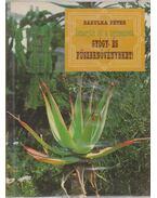 Ismerjük fel a termesztett gyógy- és fűszernövényeket!