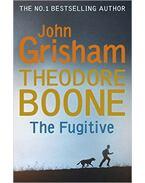 Theodore Boone-The Fugitive - John Grisham