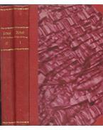 A kis királyok I-II. kötet - Jókai Mór