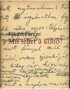 Mit tehet a költő? - Juhász Ferenc