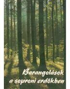 Barangolások a soproni erdőkben - Juhász Miklós