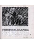 A kutya tenyésztése, tartása, kiképzése - Sárkány Pál
