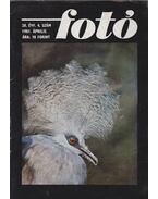 Fotó 1981/4 - Kaján Mária (szerk.)