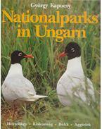 Nationalparks in Ungarn - Kapocsy György