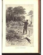 Az apróvad vadászata