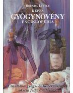 Képes gyógynövény enciklopédia