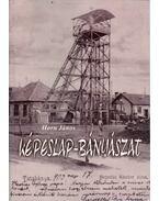 Képeslap-bányászat (dedikált)