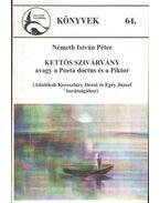 Kettős szivárvány avagy a Poeta doctus és a Piktor