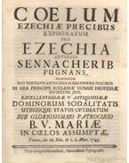 Coelum Ezechiae Precibus Expugnatum pro Ezechia Adversus Sennacherib Pugnans - Mariae, B. V.